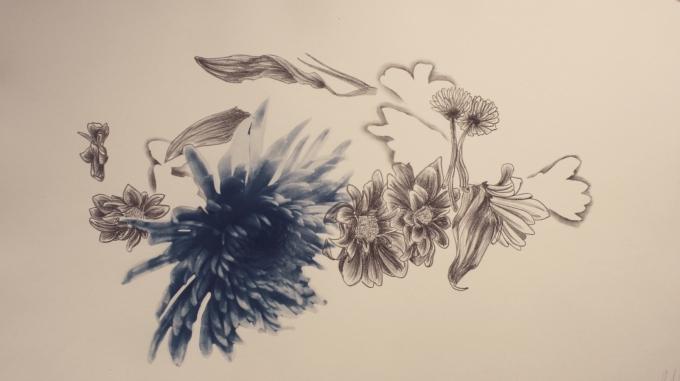Flower Crown Litho and cyanotype.jpg
