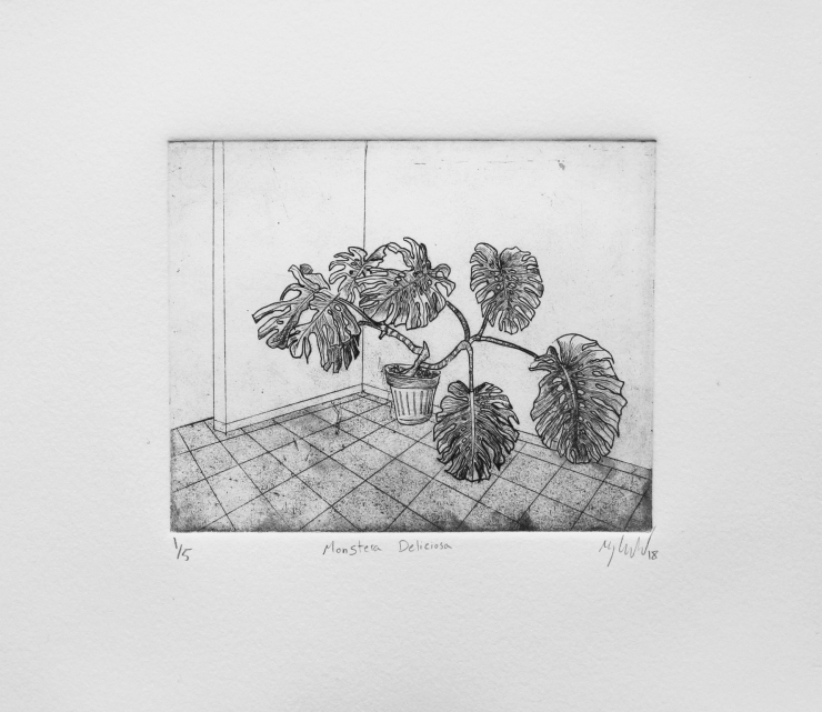 Monstera Deliceiosa etching