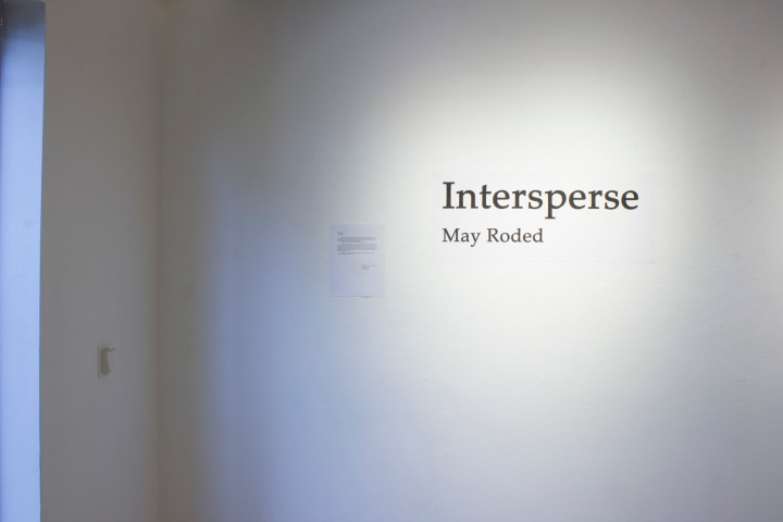 Intersperse Gallery show image 8